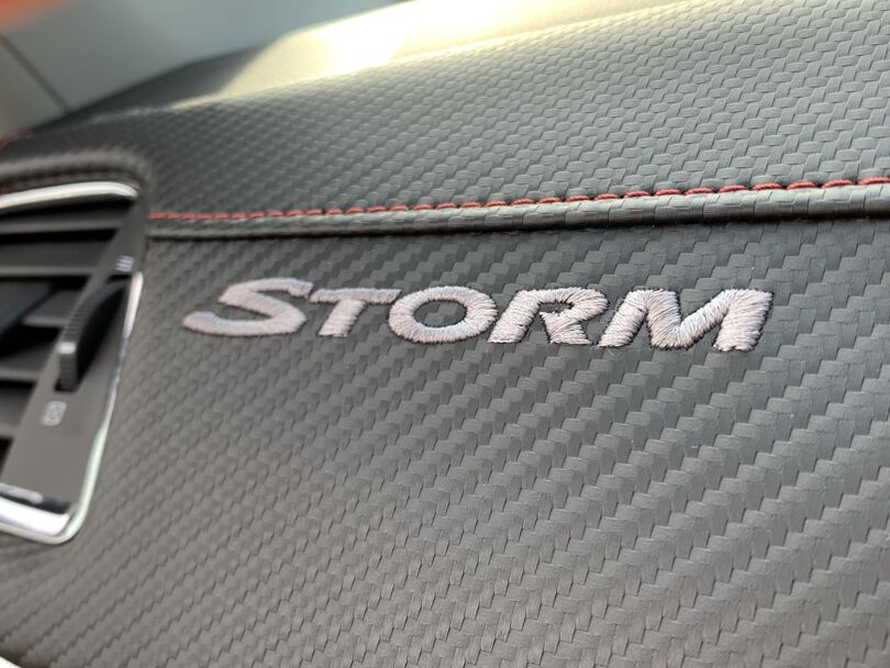 2014 Holden Commodore 13