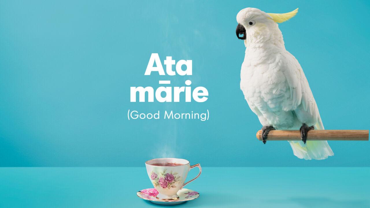 MLW CockaTumeke Ata Marie