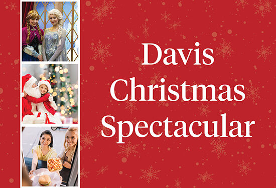 Davis Christmas Spectacular website banner