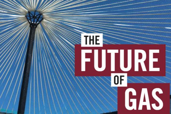 NZ Plumber future of gas