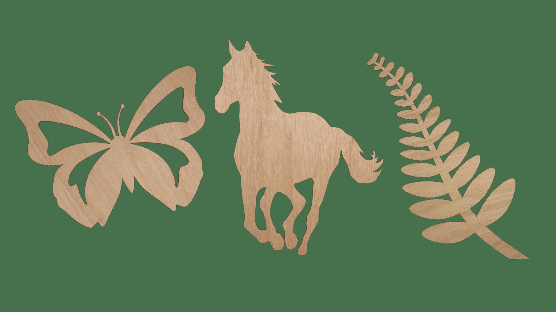 BUTTERFLY HORSE FERN