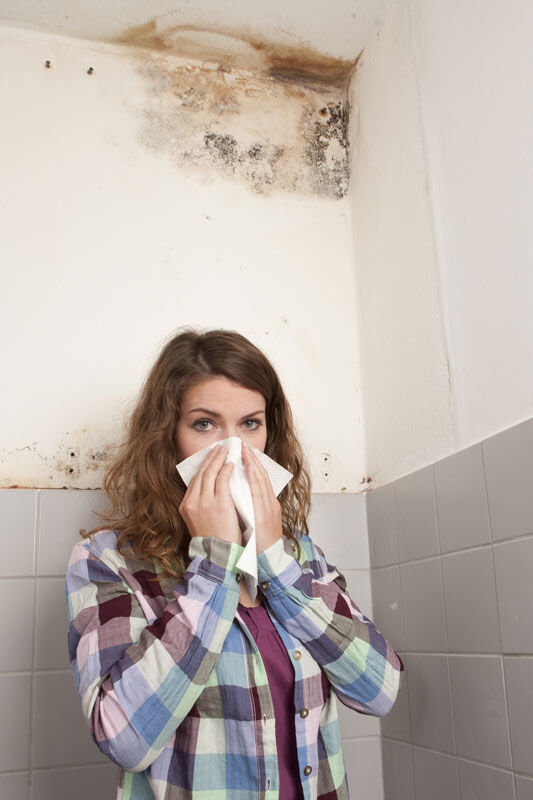Mould in the walls and allergic girl