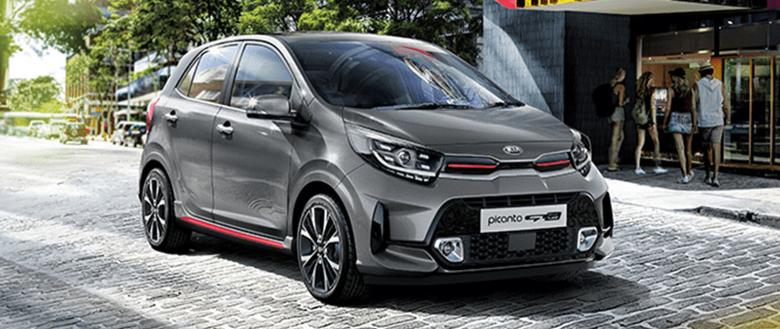 picanto large